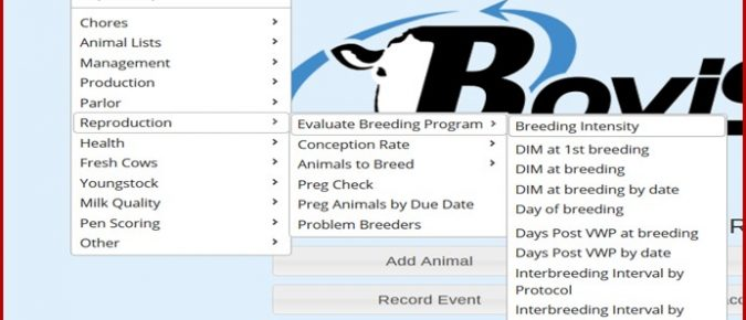Using Bovisync Reports to Assess Potential Impact of Heat Stress on a Dairy – Video